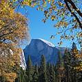 Half Dome In Yosemite by Alex Cassels