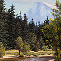 Half Dome by Irene Leach