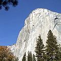 Half Dome Yosemite by Richard Reeve
