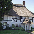 Half-timbered Thatched Cottage by Jayne Wilson