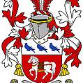 Halloran Coat Of Arms Irish by Heraldry