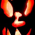 Halloween - Carved Pumpkin by Cristina Stefan
