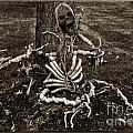 Halloween Green Skeleton Black And White by Iris Richardson