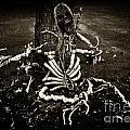 Halloween Green Skeleton Vinette Black And White by Iris Richardson