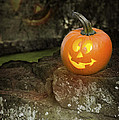Halloween Jack O Lanterns by Amanda Elwell