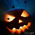 Halloween Pumpkin And Spiders by Johan Swanepoel