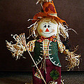 Halloween Scarecrow by Aimee L Maher ALM GALLERY