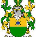 Haly Coat Of Arms Irish by Heraldry