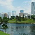 Hama Rikyu Japanese Garden by Jonah Anderson