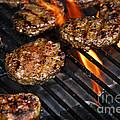 Hamburgers On Barbeque by Elena Elisseeva