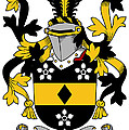 Hames Coat Of Arms Irish by Heraldry