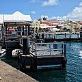 Hamilton Dock by Lucinda Walter