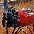 Hamilton Standard Propeller by Liane Wright