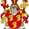 Hamley Coat Of Arms Irish by Heraldry