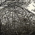 Hammond Bridge by Jon Exley