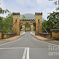 Hampden Bridge Kangaroo Valley by Leah-Anne Thompson