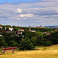 Hampstead Heath by Nicky Jameson