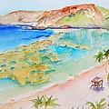 Hanauma Bay by Carlin Blahnik CarlinArtWatercolor