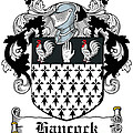Hancock Coat Of Arms Portleck Westmeath by Heraldry