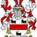 Handcock Coat Of Arms Irish by Heraldry