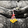 Hands Of Buddha by Adrian Evans