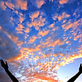 Hands Up To The Sky Showing Happiness by Michal Bednarek