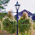 Hanging Flowers With An Old Fashioned Lantern by Jeelan Clark