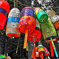 Hanging Lobster Buoys by Murray Dellow