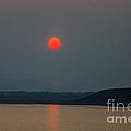 Hanging Sun by Robert Bales