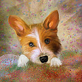 Hankie A Corgi And Westi Mix Cute Dog by Angela Stanton