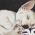 Hanks Sleeping by Jeanne Fischer