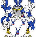 Hanna Coat Of Arms Irish by Heraldry