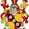 Hannon Coat Of Arms Irish by Heraldry