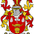 Hanraghan Coat Of Arms Irish by Heraldry