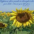 Happiness by Viktoria K Majestic