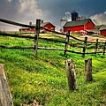 Happy Acres Farm by Diana Angstadt