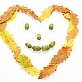 Happy Autumn by Dawn Gilfillan