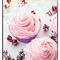 Happy Birthday Cupcakes by Edward Fielding