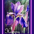Happy Birthday Iris  by Irina Sztukowski