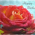 Happy Birthday Rose by Debbie Portwood