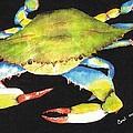 Happy Crab-3 by Carol Lindquist