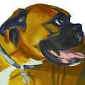 Happy Dog by Sarah Vandenbusch