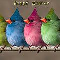 Happy Easter by John Haldane