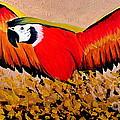 Happy Flight by Preethi Mathialagan