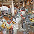 Happy Grey Pony by Barbara McDevitt