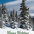 Happy Holidays - Winter Trees And Rising Clouds by Cascade Colors