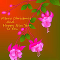 Happy Holidays by Latha Gokuldas Panicker
