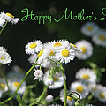 Happy Mother's Day 03 by Ericamaxine Price