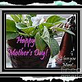 Happy Mother's Day I Love You Mom by Barbara Griffin
