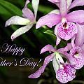 Happy Mothers Day by Pharaoh Martin